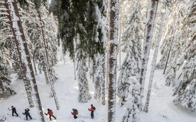 fredrik_schlyter-cross-country_skiing-5971